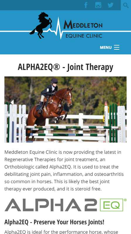 Meddleton Equine Clinic - mobile website screenshot - joint therapy page