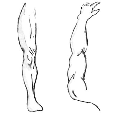 Reverse Imaging: limb to limb used to demonstrate where to select acupuncture points